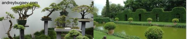 Создание классического стиля ниваки